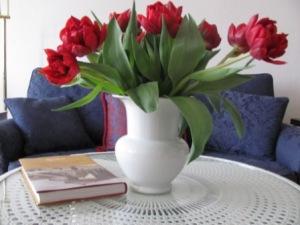 Tulpen 1 Foto: nw2014
