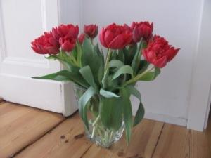 Tulpen 3 Foto: nw2014