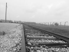 Auschwitz-Birkenau: Schicksalsort Rampe Foto: nw2016