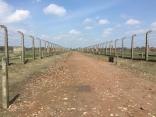 Auschwitz-Birkenau Foto: nw2016