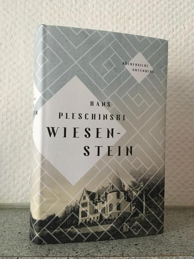 Hans Pleschinski, Wiesenstein | Foto nw2019 #roman #Hauptmann