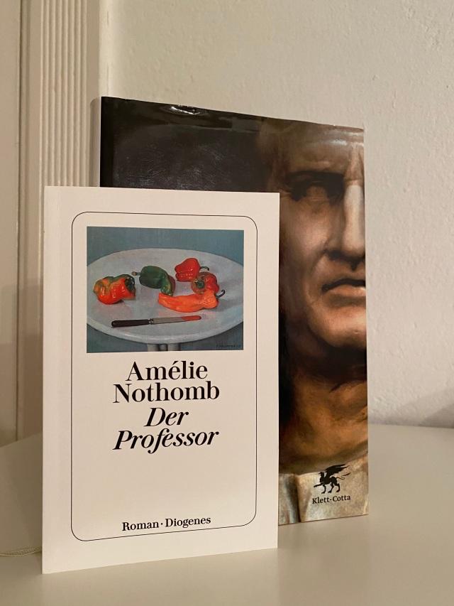 Amélie Nothomb, Der Professor | Foto: nw2020